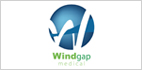 Mass Life Sciences Center Awards $1M Accelerator Loan to Windgap Medical